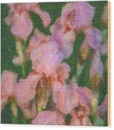 Pink Iris Family Wood Print
