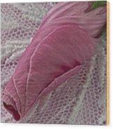Pink Lavatera Bud Macro Wood Print