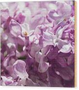 Pink Lilacs Closeup - Featured 3 Wood Print