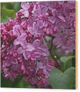 Pink Lilacs Wood Print
