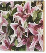 Pink Lilies I Wood Print
