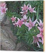 Pink Lilys Wood Print