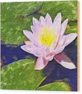 Pink Lotus At Waikoloa Wood Print