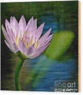 Purple Petals Lotus Flower Impressionism Wood Print