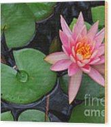 Pink Lotus Love Wood Print