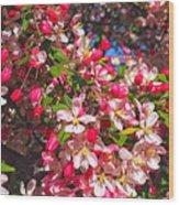 Pink Magnolia 2 Wood Print