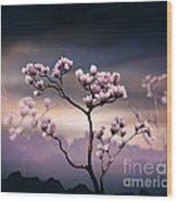 Pink Magnolia - Dark Version Wood Print