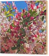 Pink Magnolia Wood Print by Joann Vitali