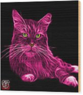 Pink Maine Coon Cat - 3926 - Bb Wood Print