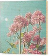Pink Milkweed Wood Print