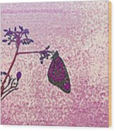 Pink Monarch Wood Print