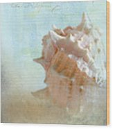 Pink Murex Seashell Wood Print