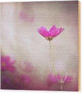 Pink Nouveau Wood Print