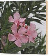 Pink Oleander 4 Wood Print