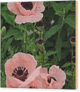 Pink On The Bridge Of Flowers  Wood Print