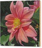 Pink Orange Center Flower Wood Print