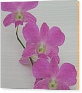 Pink Orchids 1 Wood Print