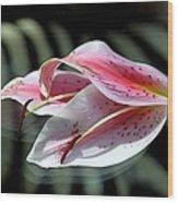 Pink Oriental Lily Reassembled 2 Wood Print