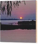 Pink Paradise Pond Wood Print