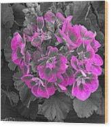 Pink Paridise Wood Print