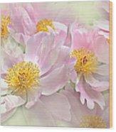 Pink Peony Flowers Parade Wood Print