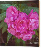 Pink Plumeria Abstract Flower Painting Wood Print