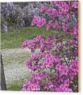 Pink Purple Mississippi Blooms Wood Print