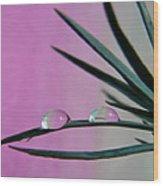 Pink Rain Drops Wood Print