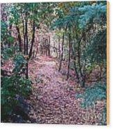 Pink Road Wood Print