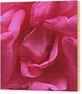 Pink Rose 01 Wood Print