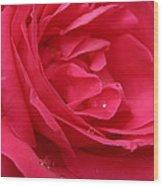 Pink Rose 03 Wood Print