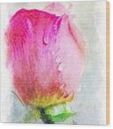 Pink Rose Bud - Digital Paint II Wood Print