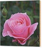 Pink Rose Bud I Wood Print