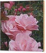 Pink Rose Group I Wood Print