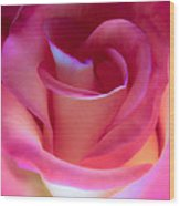 Pink Rose Pedals Wood Print