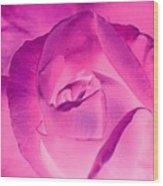 Pink Rose - Photopower 1790 Wood Print
