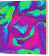 Pink Rose - Photopower 1803 Wood Print