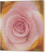 Pink Rose Romance  Wood Print