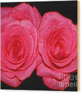 Pink Roses With Colored Edges Effects Wood Print