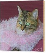 Pink Scarf Wood Print