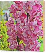 Pink Shadows Wood Print