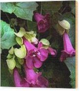 Pink Trumpets Wood Print