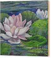 Pink Water Lilies By Barbara Haviland Wood Print