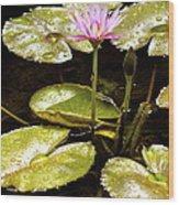 A Waterlily Reflection Wood Print