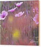Pink Wild Geranium Wood Print