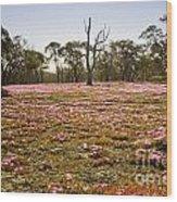 Pink Wildflowers Wood Print