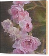 Pink Winter Roses One Wood Print