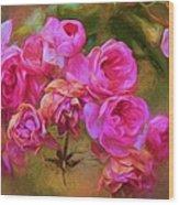 Pink Winter Roses Three Wood Print