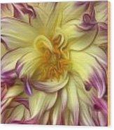 Pink Yellow Dahlia Wood Print