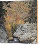 Pinkham Notch - Fm000105 Wood Print